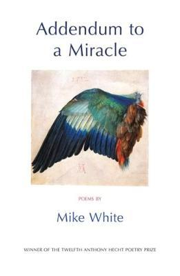 Addendum to a Miracle by Mike White