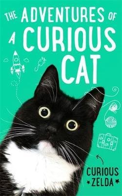 The Adventures of a Curious Cat by Curious Zelda image