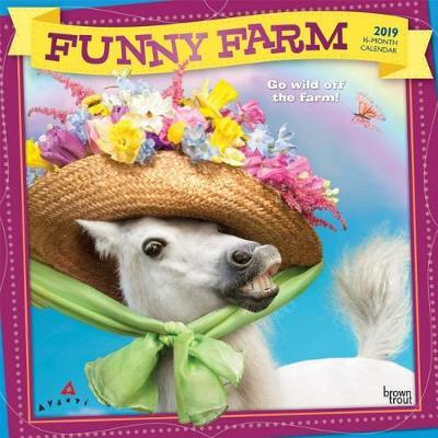 Avanti Funny Farm 2019 Square Foil by Inc Browntrout Publishers image