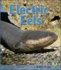 Electric Eels by Sara Van Dyck image
