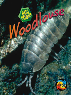 Woodlouse by Karen Hartley