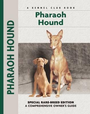Pharoah Hound by Juliette Cunliffe