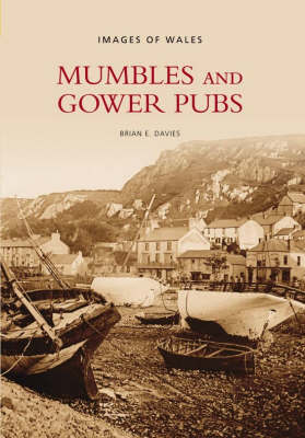 Mumbles and Gower Pubs by Brian Davies image