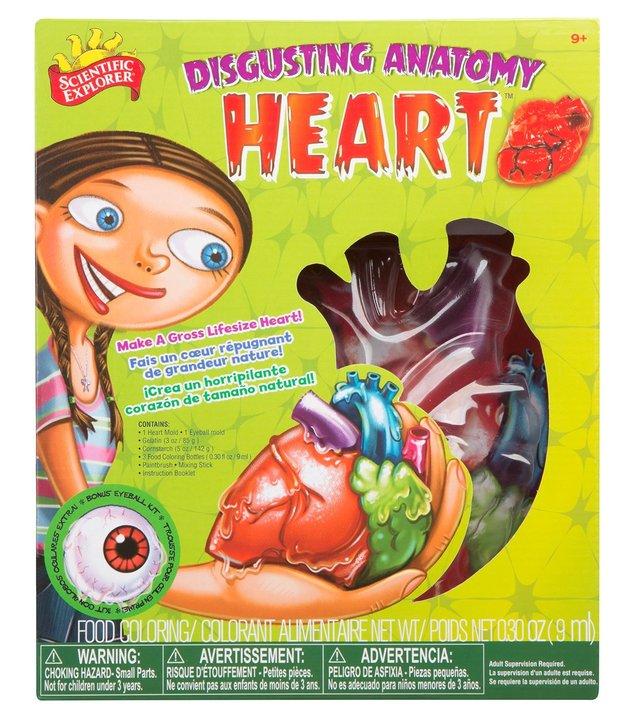 Scientific Explorer: Disgusting Anatomy - Heart Science Kit