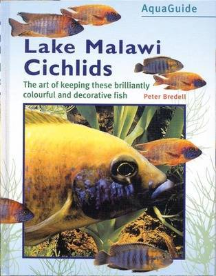 Malawi Cichlids by Peter Bredell image