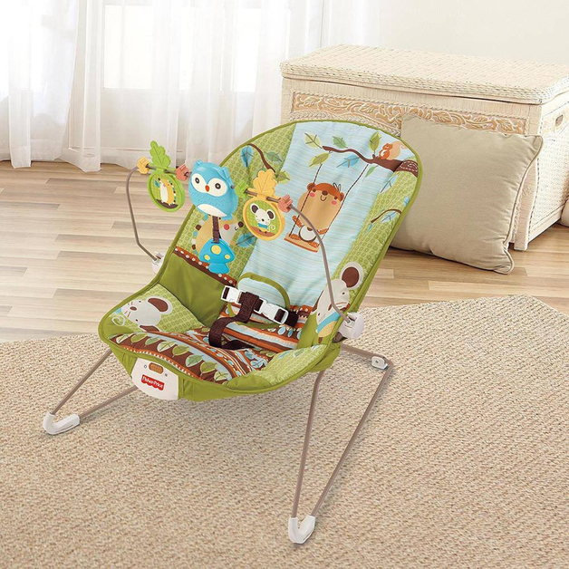 Fisher Price: Baby's Bouncer