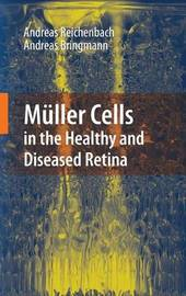 Muller Cells in the Healthy and Diseased Retina by Andreas Reichenbach image
