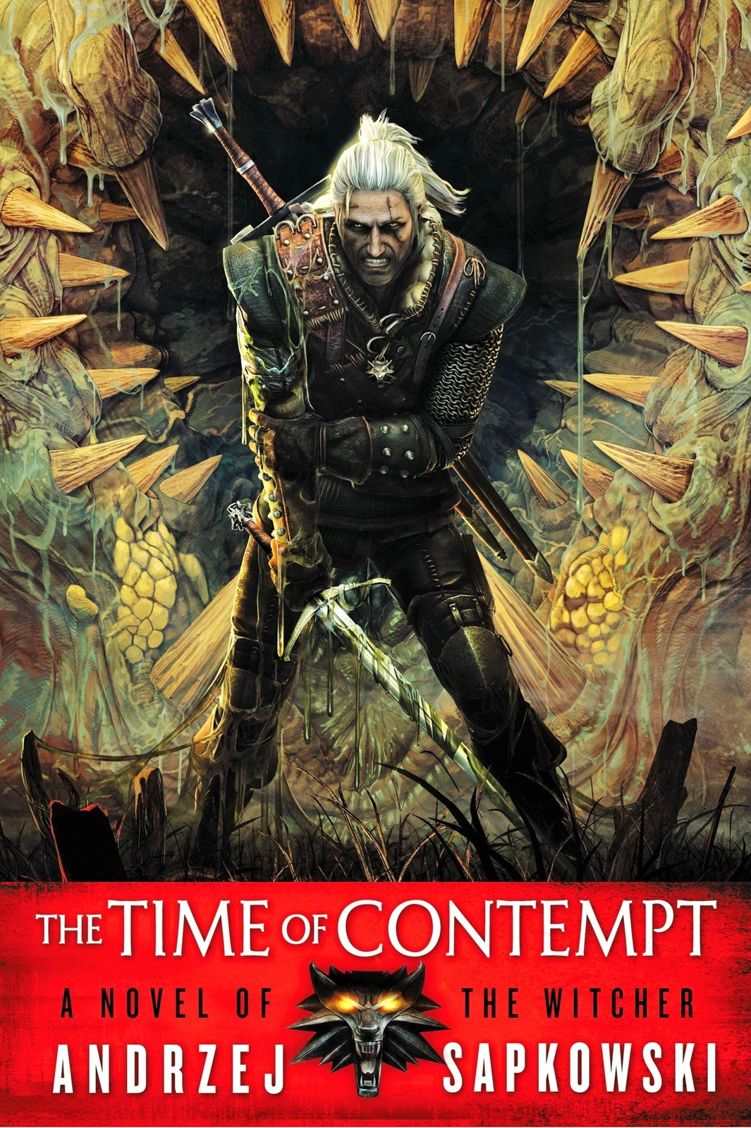 The Time of Contempt (The Witcher #3) (US Ed.) by Andrzej Sapkowski image