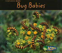 Bug Babies by Charlotte Guillain image