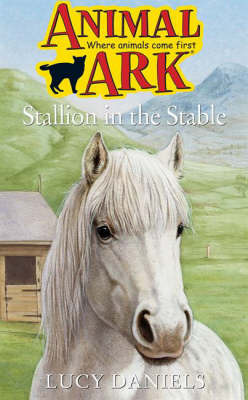 Stallion in the Stable by Lucy Daniels image