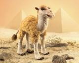 Folkmanis: Hand Puppet - Camel
