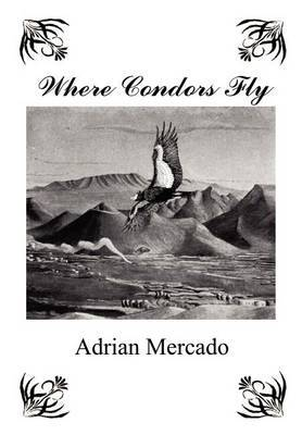 Where Condors Fly by Adrian Mercado image