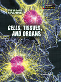 Cells, Tissues, and Organs by Richard Spilsbury image