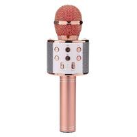 Karaoke Microphone with Bluetooth Speaker - Rose Gold