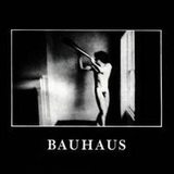 In the Flat Field (Box Set) by Bauhaus
