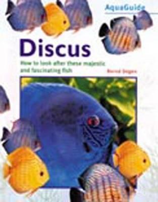 Discus by Bernd Degen
