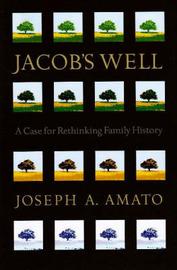 Jacob's Well by Joseph Anthony Amato image