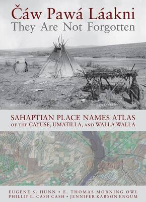 Caw Pawa Laakni / They Are Not Forgotten by Eugene S Hunn image