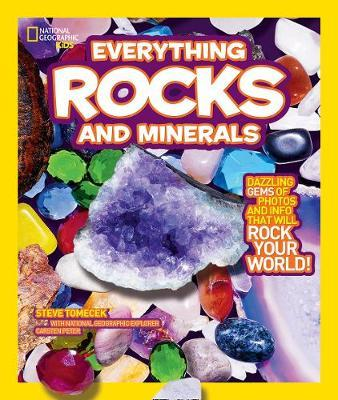 Everything Rocks and Minerals by Steve Tomecek image