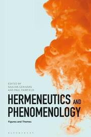 Hermeneutics and Phenomenology