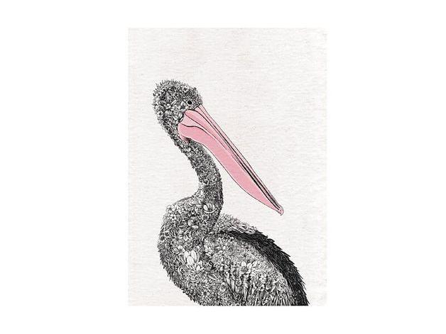 Maxwell & Williams: Marini Ferlazzo Birds Tea Towel - Australian Pelican