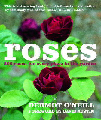 Roses by Dermot O'Neill