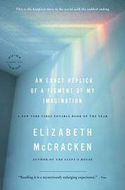 An Exact Replica of a Figment of My Imagination by Elizabeth McCracken image