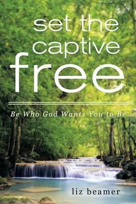 Set the Captive Free by Liz Beamer image