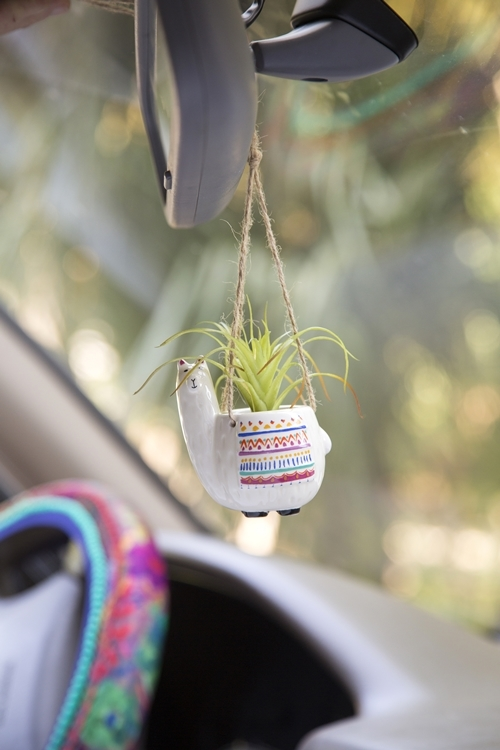 Natural Life: Mini Hanging Succulent - Llama