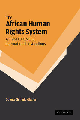 The African Human Rights System, Activist Forces and International Institutions by Obiora Chinedu Okafor image