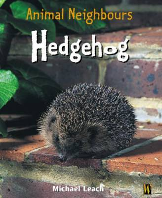 British Animals: Hedgehog by Michael Leach image