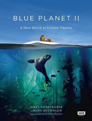 Blue Planet II by James Honeyborne