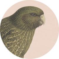 100 Percent NZ - Kakapo Ceramic Coaster