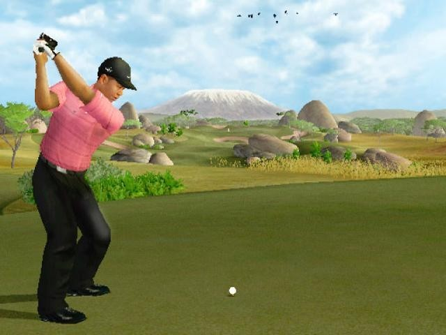 Tiger Woods PGA Tour 07 for Nintendo Wii image
