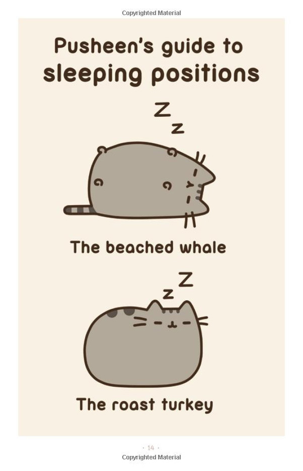 I Am Pusheen the Cat by Claire Belton image