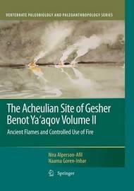 The Acheulian Site of Gesher Benot Ya'aqov Volume II by Nira Alperson-Afil image