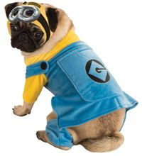 Despicable Me: Minion - Pet Costume (Medium)