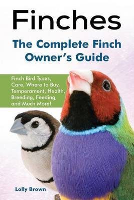 Finches by Lolly Brown