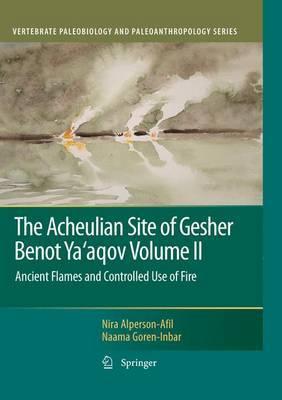 The Acheulian Site of Gesher Benot Ya'aqov Volume II by Nira Alperson-Afil