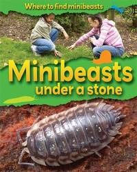 Where to Find Minibeasts: Minibeasts Under a Stone by Sarah Ridley image