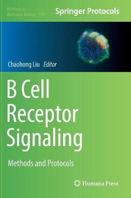 B Cell Receptor Signaling image
