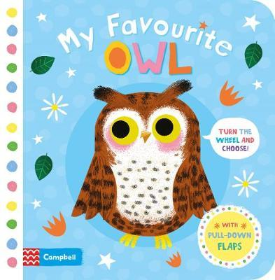 My Favourite Owl by Campbell Books image