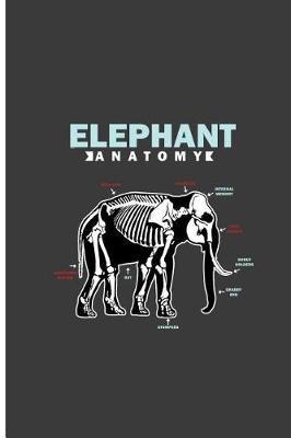 Elephant Anatomy by Alicia Murray