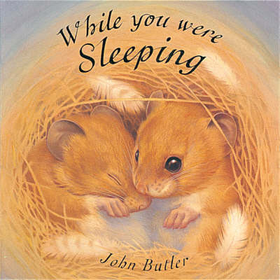 While You Were Sleeping by John Butler image