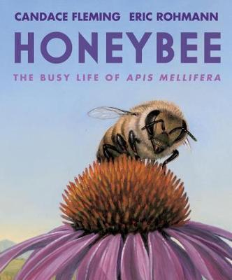 Honeybee by Candace Fleming image
