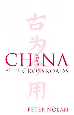 China at the Crossroads by Peter Nolan image