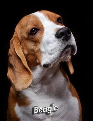 Beagle by Notebooks Journals Xlpress