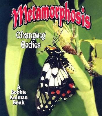 Metamorphosis by Bobbie Kalman image