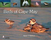 Birds of Cape May by Kevin T Karlson image