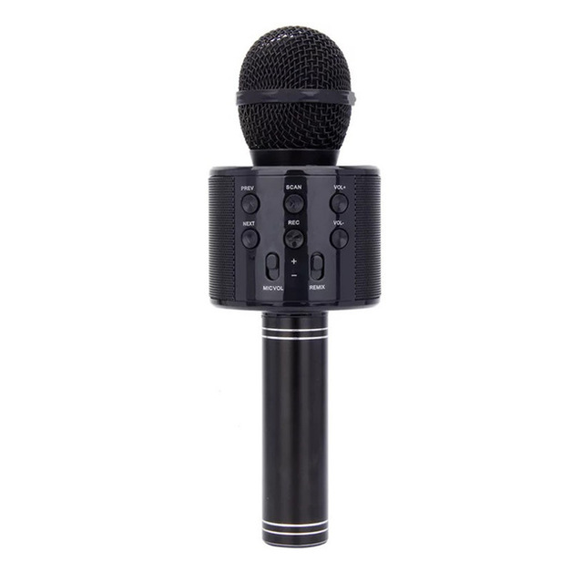 Karaoke Microphone with Bluetooth Speaker - Black
